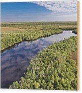 Everglades Waterway Wood Print