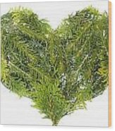 Evergreen  Coniferous Christmas Trees Heart Isolated Wood Print