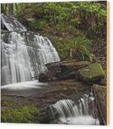 Evergreen Steps Wood Print