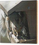 Evil Rodent Wood Print