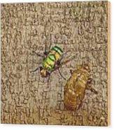 Evolving Nature Wood Print