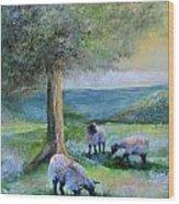 Ewe Hoo Wood Print