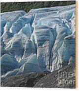 Exit Glacier Viewpoint Wood Print