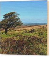 Exmoor's Heather-covered Hills Wood Print