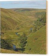 Exmoor's River Barle Wood Print
