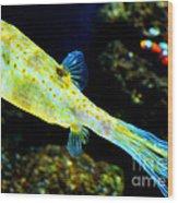 Exotic Fish Wood Print