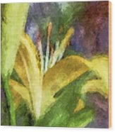 Exotic Lily In Oil Wood Print