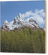 Expedition Everest Wood Print