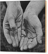 Explorer's Hands Wood Print