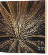 Explosion Of Love Wood Print