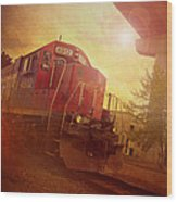 Express Train Wood Print by Joel Witmeyer