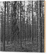 Exspruce Wood Print