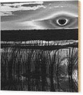 Eye Over Everglades Wood Print