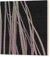 Eyelashes, Sem Wood Print by Steve Gschmeissner