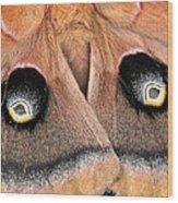 Eyes Of Deception Wood Print by Peg Urban
