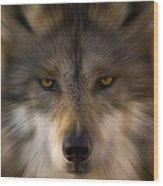 Eyes Of The Beast Wood Print
