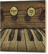 Facing The Music Wood Print by Evelina Kremsdorf