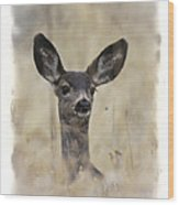 Faded Fawn Wood Print