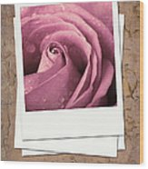 Faded Rose Photo Wood Print