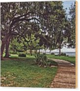 Fairhope Lower Park 2 Wood Print