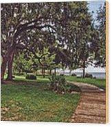 Fairhope Lower Park 5 Wood Print