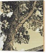Faithful Wood Print