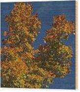 Fall 23 Wood Print