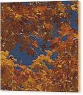 Fall 25 Wood Print