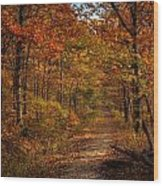 Fall At Center Point Trailhead Wood Print