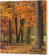 Fall At Home Wood Print