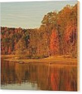 Fall At Patoka Wood Print