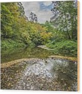 Fall At The Low Stream Wood Print