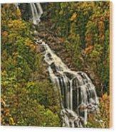 Fall At Whitewater Falls  Wood Print