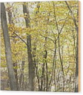Fall Beginning  Wood Print