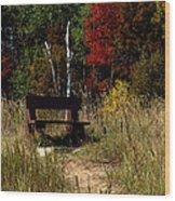 Fall Bench Dreams Wood Print