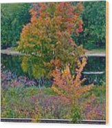 Fall By The River 7 Wood Print