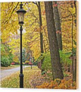 Fall Color And Lamppost Wood Print