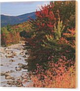 Fall Color In The White Mountains Wood Print