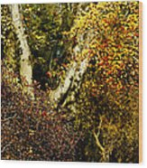 Fall Color Wall Art Landscape Wood Print