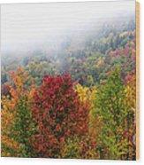 Fall Color Panoramic Wood Print