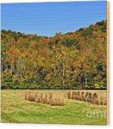 Fall Color Randolph County West Virginia Wood Print