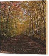 Fall Color Road Wood Print