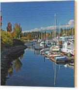 Fall Colors At English Bay Wood Print