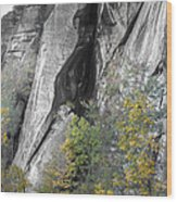 Fall Colors Chimney Rock State Park Wood Print