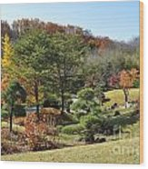 Fall Colors Wood Print by Denise Ellis
