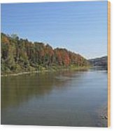 Fall Colors In London Ontario 7782 Wood Print