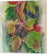 Fall Colors Wood Print by John Smeulders