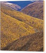 Fall Colours Along Top Of The World Wood Print