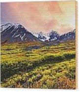Fall Colours And Auriol Range Wood Print