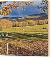 Fall Colours, Cows In Field And Mont Wood Print